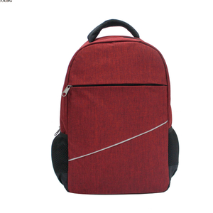 Professional Adult Business Two Tone Computer Bag