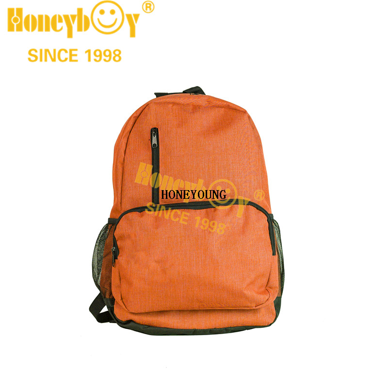 Professional Classical 300D Two Tone School Backpack