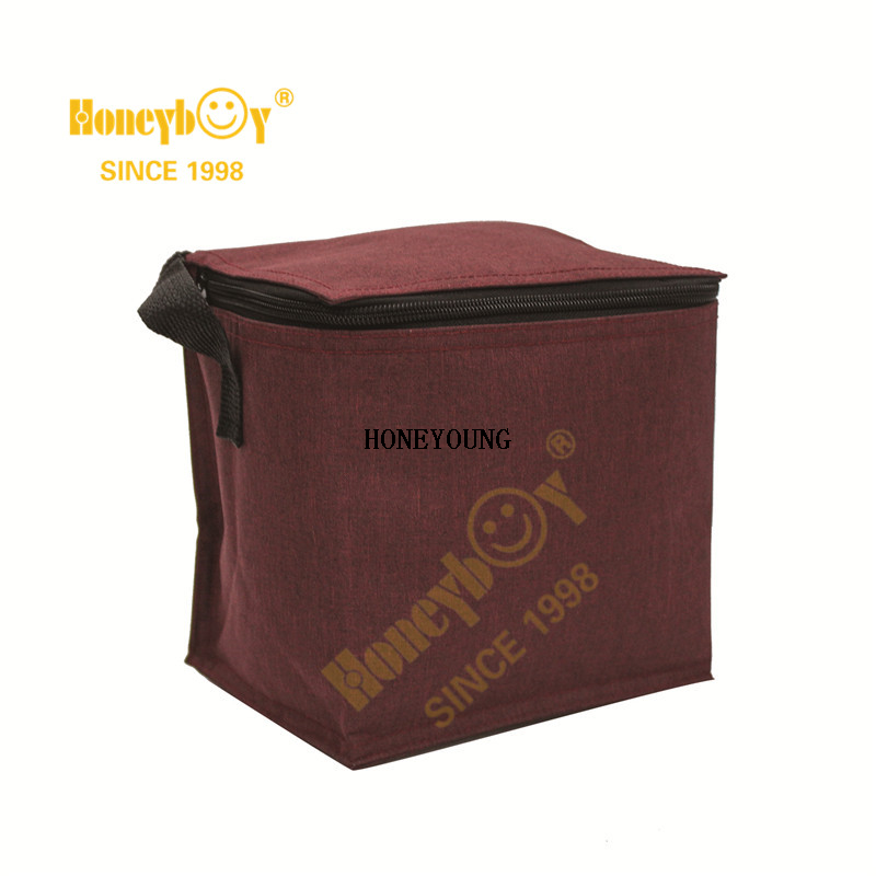 Beach Bag Insulated Aluminum Cooling Large Cooler HY-L007