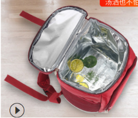 Cooler backpack (2)